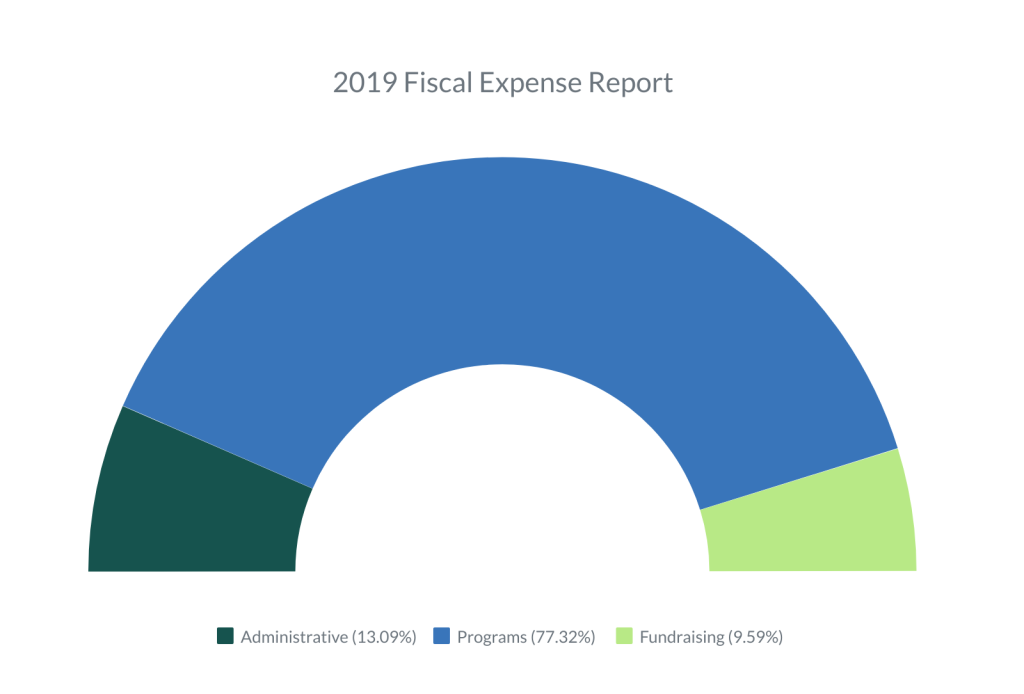 2019 fiscal breakdown expenses for website