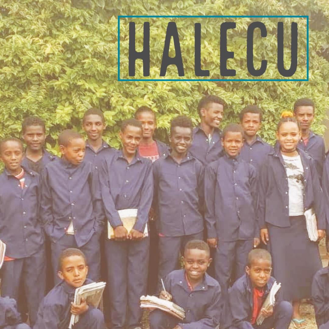 Halecu
